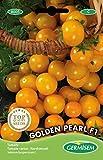 germisem golden pearl f1 semi di pomodoro 0.5 g