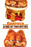 Garfield  A Tail of Two Kitties Movie Poster  68 5