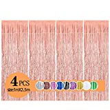 Metallic Tinsel Curtains/Foil Streamers/Backdrop Fringe Curtains for Birthday Wedding Party,DIY Photo Booth Decorations, Door Window Backdrop Background Photo Props (1x2.5m)(Rose Gold)