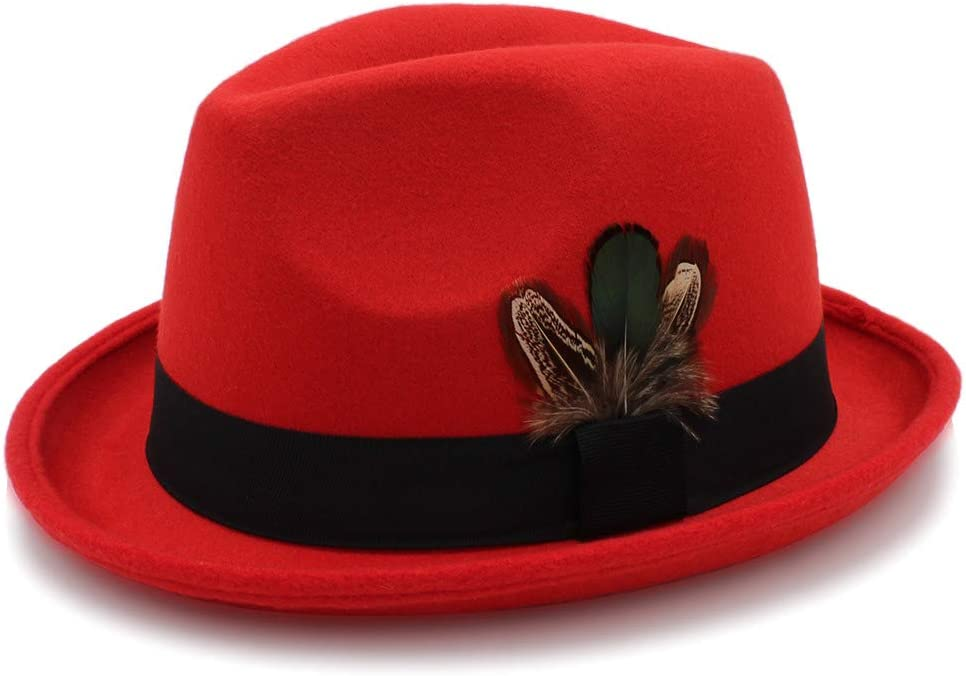 no-branded Women's 6 Colour Fedora Hat Panama Hat with Feather Autumn Female Felt Hat ZRZZUS (Color : Red, Size : 56-58 cm)