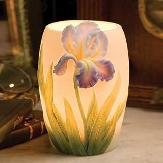 Bearded Iris Night Lamp Ibis & Orchid Design