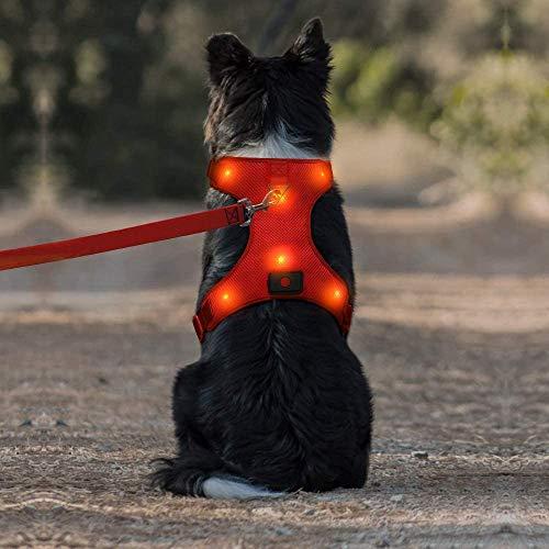 Iseen LED-Hundegeschirr, Micro-USB, wiederaufladbar, kein Ziehen, Haustierweste, Geschirr mit komfortablem, gepolstertem Anzug für kleine, mittelgroße und große Hunde (L, rot)