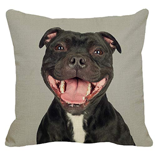 The Beach Stop Adorable Dog Print Soft Cushion Covers (Staffy Grey)
