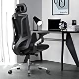 Ergonomic Office Desk Chair High Back Mesh Desk Chair with 4D Adjustable Arm Rests Computer Chair Height Adjustable and Head Support 3 Adjustable Tilt Tension - Black