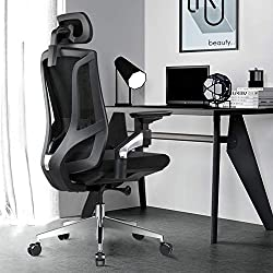 Ergonomically Friendly Office Chair