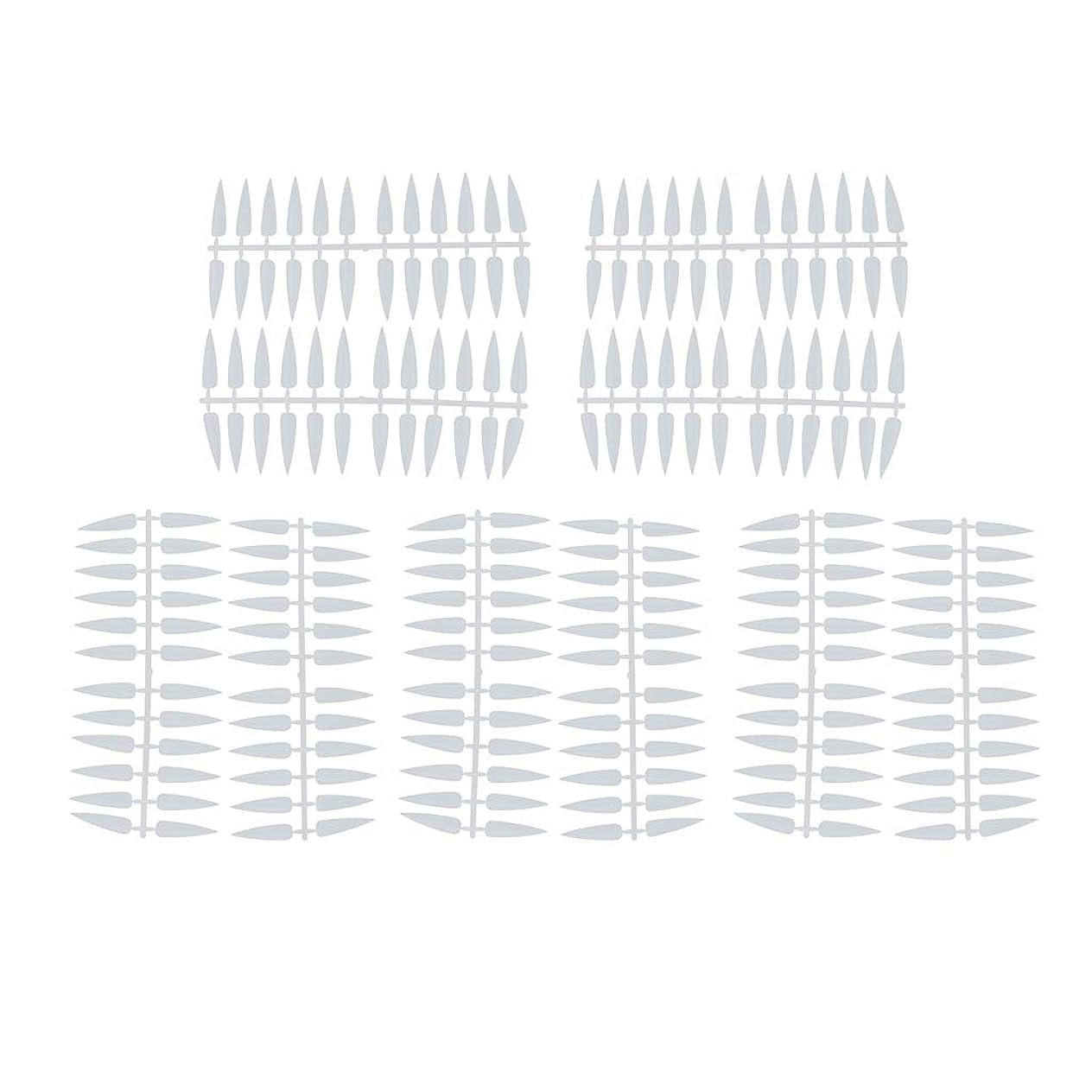 アセンブリ錆び右プロのマニキュアカラーディスプレイチャート/カラーアートディスプレイパレット(240 Tips) - ナチュラル