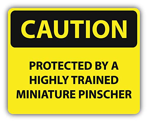 10cm! Klebe-Folie Wetterfest Made-IN-Germany Danger Caution Achtung Vorsicht Protected Highly Trained Miniature Pinscher G07 UV&Waschanlagenfest Auto-Aufkleber Sticker Decal