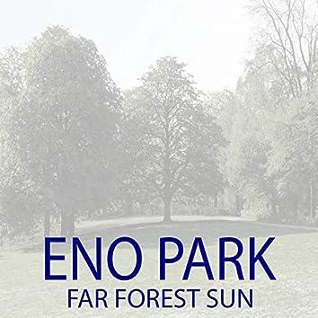 Far Forest Sun