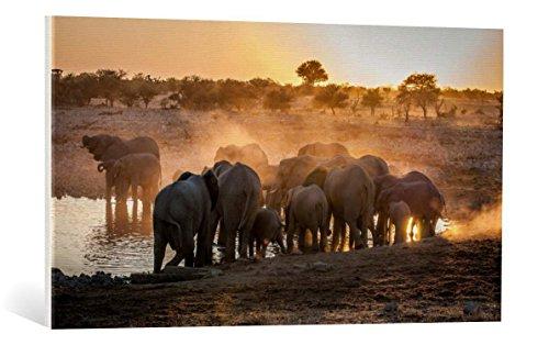 Kunst für Alle Cuadro en Lienzo: Simon Van Ooijen Elephant Huddle -...