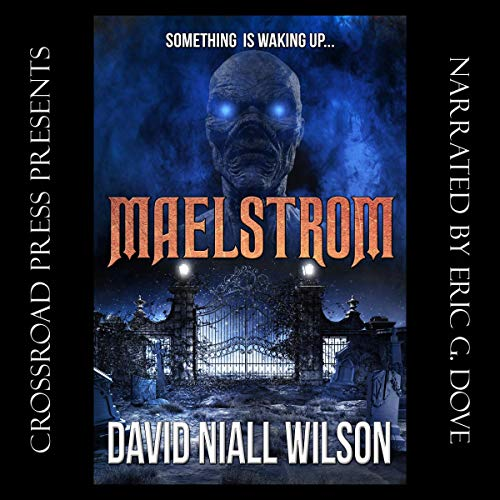 Maelstrom cover art
