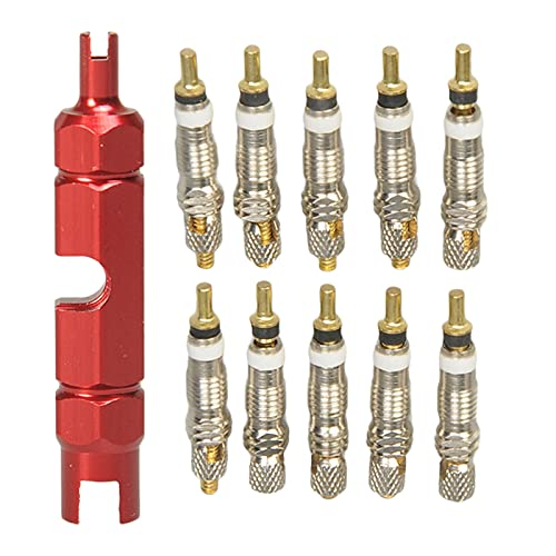 Nobranded 10 Piezas de núcleo de válvula de Bicicleta con Herramienta de extracción, Accesorios de Bicicleta de Carretera MTB - Rojo