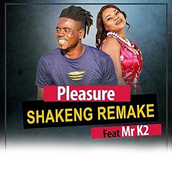 Shakeng (Remake)