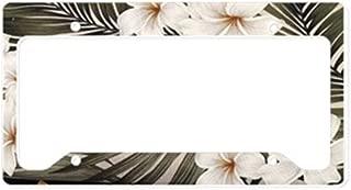 CafePress Natural Hawaii Tropical Aluminum License Plate Frame, License Tag Holder