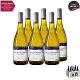 Mercurey 1er Cru Le Clos l'Evêque MONOPOLE Blanc 2017 - Château d'Etroyes - Vin AOC Blanc de Bourgogne - Cépage Chardonnay - Lot de 6x75cl