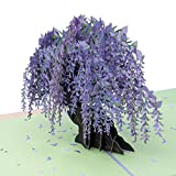 Paper Love Wisteria Pop Up Card, 3D Popup Greeting Cards, for Birthday, Valentine's Day, Mothers Day, Spring, Fathers Day, Graduation, Wedding, Anniversary, Thank You, Get Well, All Occasion   5' x 7'