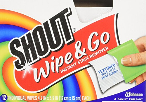 Shout - Wipe & Go - Sofort Fleckentferner