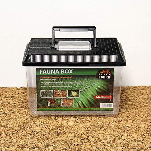 Terra Exotica Fauna Box - medium 30 x 19,5 x 20,5 cm