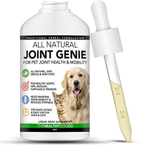 The Healthy Dog Co all Natural Joint Genie | Integratori Alimentari per Rafforzamento Articolazioni Cani e Gatti | 100 Dosi | Integratore Articolazioni Rapido in Gocce | Integratori per Cani Anziani