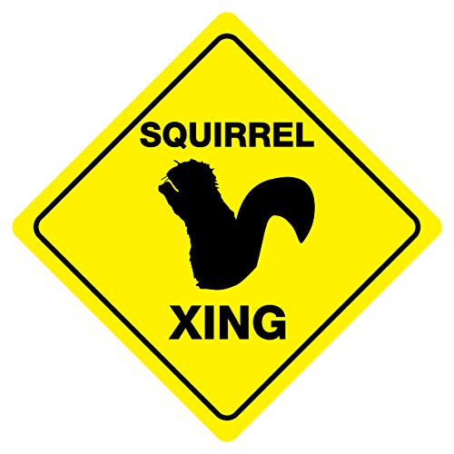 Squirrel Crossing Animal Funny Novelty Xing Sign
