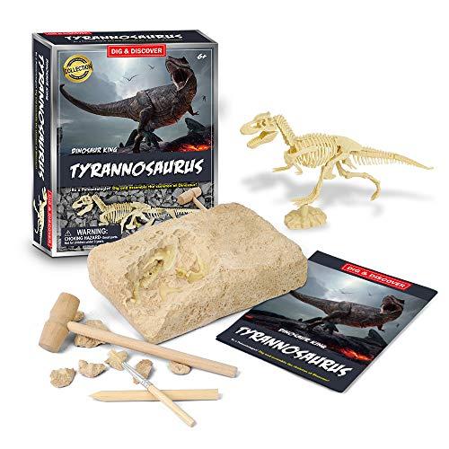 Dinosaur Excavation Kits for Kids, Dinosaur Skeleton Toys for 6-12 Year Old Boys and Girls, Dinosaur Fossil Dig Kits, Science Kit Educational Toys for Kids, Birthday Gifts for Kids Boys Girls