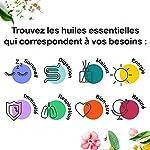 Huile Essentielle BIO d'Arbre à Thé, Tea tree - 100% Pure et Naturelle - HEBBD et ECOCERT - Utilisation Alimentaire - Parfum Citronné, Boisé et Terreux - 10ml - VOSHUILES #2