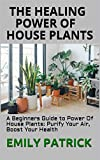 THE HEALING POWER OF HOUSE PLANTS : A Beginners Guide to Power Of House Plants: Purify Your Air, Boost Your Health (English Edition)