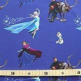 Loopomio Jersey Stoffe Frozen Anna und ELSA lila 1,00m x VB
