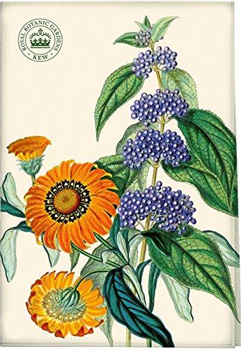 Creative Tops Royal Botanic Garden Kew Lavanda Cotone canovaccio strofinaccio Fiore Gazania strisciante Blue