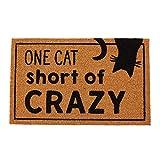 Mud Pie Crazy Cat Lady Door Mat Coir Doormat
