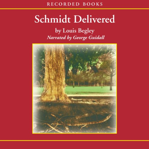 Schmidt Delivered cover art