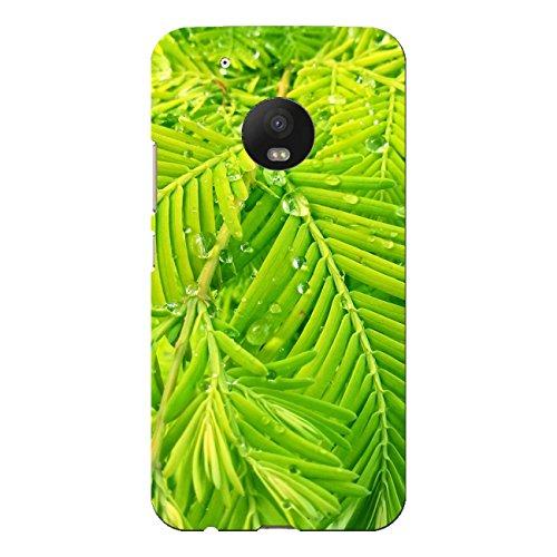 DISAGU SF SDI 5577_ 311# Zub cc7427Design Custodia Protettiva per Moto G5Plus Motivo Green Nature