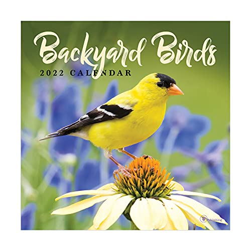 TF PUBLISHING - 2022 Backyard Birds Mini Calendar - Home and Office Organizer - Monthly Grid Space for Plans and Schedules - 4 Bonus Months - 7'x7'