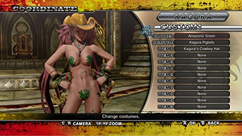 Onechanbara Z2: Chaos(お姉チャンバラ Z2 ~カオス~ ) DLC Amazonic Green & Amazonic Turquoise [オンラインコード]