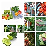 fine_fine 2pc Star Shape Growing Molds for Planting Cucumber - Heart Shaped Cucumber Shaping Mold Garden Vegetable Growth Forming Mould Tool - Transparent Fruit Shaping Growth Molds (Clear)
