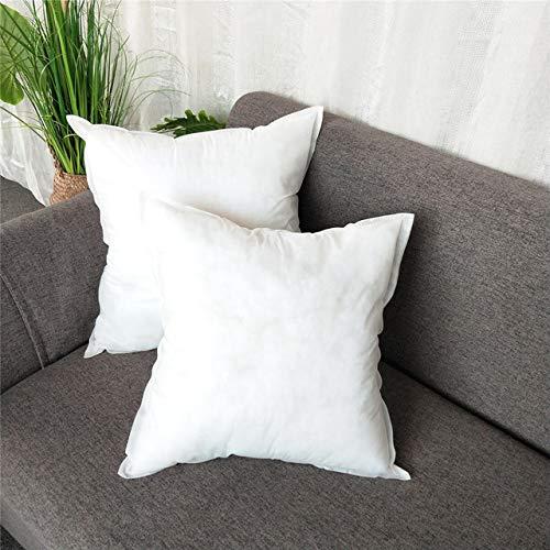 FHC Polares Almohadas Cojines núcleos, Blanca y Suave Interior lecho Lleno hogar de Ancianos,45X45CM 2PCS