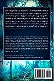 Zoom IMG-1 la rinascita del fuoco blu