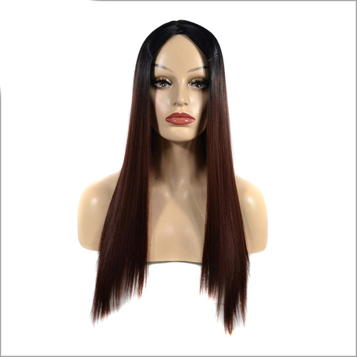 不振ラテン意気込みHOHYLLYA 黒グラデーションブラウンロングストレートヘアミドルパート用女性コスプレパーティードレス合成髪レースかつらロールプレイングかつらロングとショート女性自然 (色 : ブラウン, サイズ : 60cm)