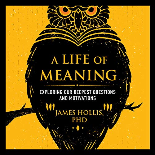 A Life of Meaning cover art