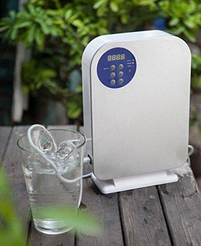 Express Panda Ozon-Generator für Wasser und Luftreinigung - O3 Ozon Sanitizer Sterilisator mit Vorwahluhr und Fernbedienung für Reinigung von Gemüse und Obst, Reinigung von Wasser, Gerüchen und Bakterien aus der Luft entfernen