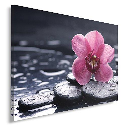 Feeby Frames, Cuadro en lienzo, Cuadro impresión, Cuadro decoración, Canvas de una pieza, 30x40...