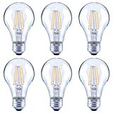 Asencia AN-03672 60 Watt Equivalent A19 Clear All Glass Vintage Filament Dimmable LED Light Bulb, Daylight, 6-Pack, Clear Glass