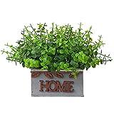 NIDONE Plantas de Potted Artificial, Cerca de Madera Planta Verde eucalipto Artificial, Planta Falsa Bonsai con Pot Bonse Fenc Jarrón Bonsai Desktop Fake Bonsai Ornament para jardín de Boda