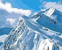 デジタル インテリア キャンバスの油絵子供 デジタル油絵 数字キッ アートグラフィティ装飾カスタムギフト 40x50センチ フレームレス雪山