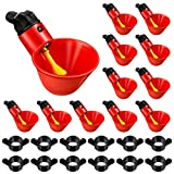 Lauwell 12 Pieces Poultry Watering Cups Chicken Waterer Cups Chicken Water Feeder Cups for Poultry Chicken Quail Pigeon Watering