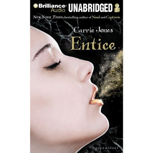 Entice audiobook cover art