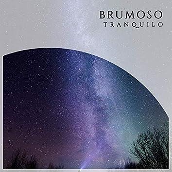 2019 Brumoso Tranquilo