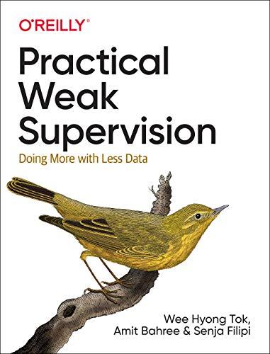 [画像:Practical Weak Supervision: Doing More With Less Data]