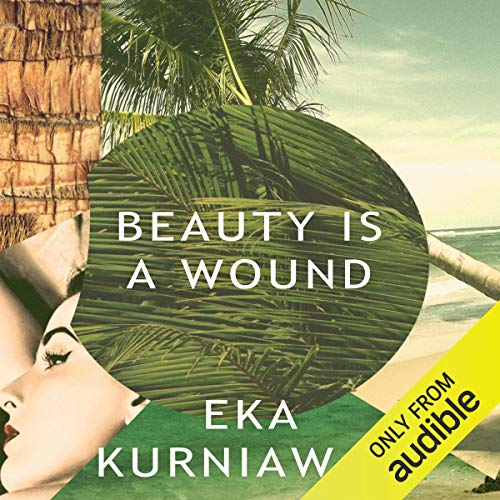 Beauty Is a Wound cover art