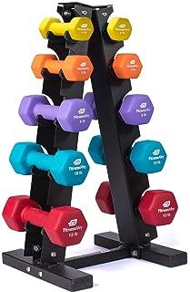 Fitness Alley Steel Dumbbell Rack - 5 Tier Weight Holder & 5 Tier Weight Rack Dumbbell Stand - Dumbbell Holder - Dumbbell Rack Stand (5 Tier Rack & 4,5,8,10,12 lbs Dumbbells)