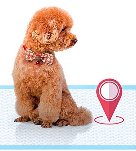 Amoor Empapadores de Perros Gatos,Alfombrilla higiénica de Entrenamiento para Perros Gatos,Toallitas de Entrenamiento para Mascotas. (20pcs 40 * 60 Cm)